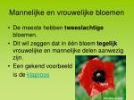 mannelijke en vrouwelijke bloemen4