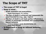 the scope of tmt