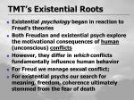 tmt s existential roots1