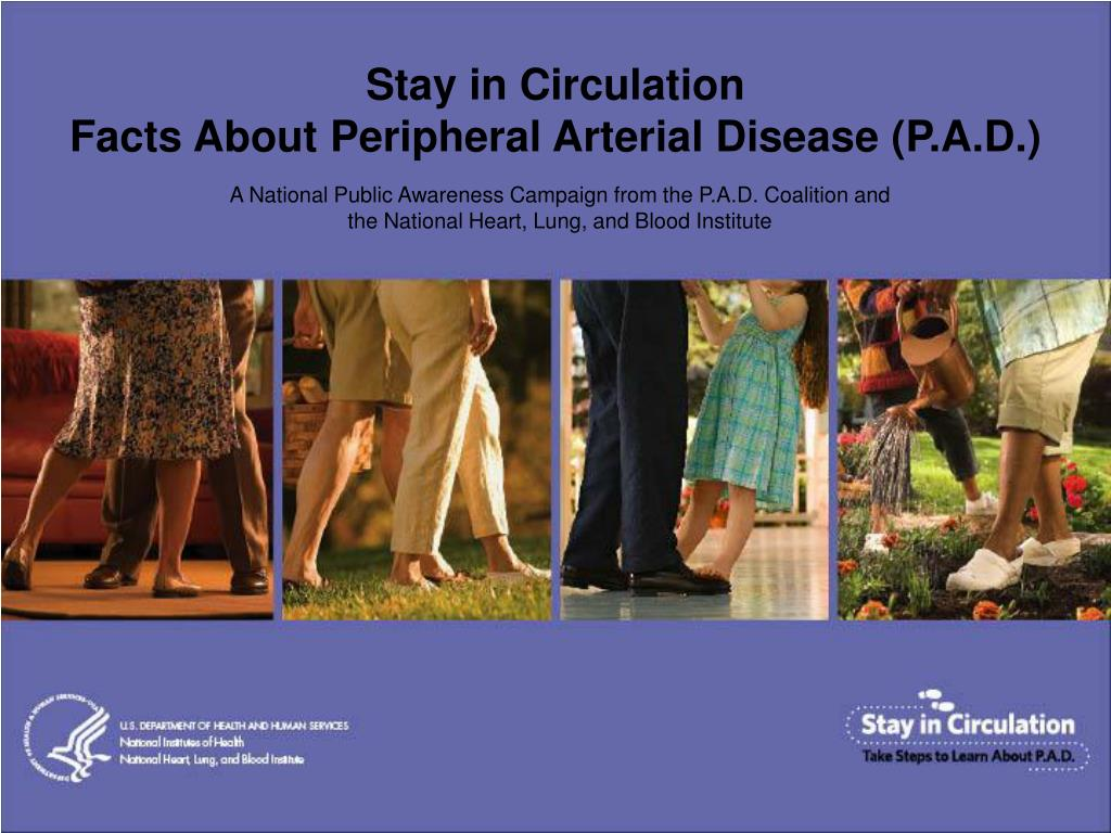 stay in circulation facts about peripheral arterial disease p a d l.