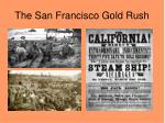 the san francisco gold rush