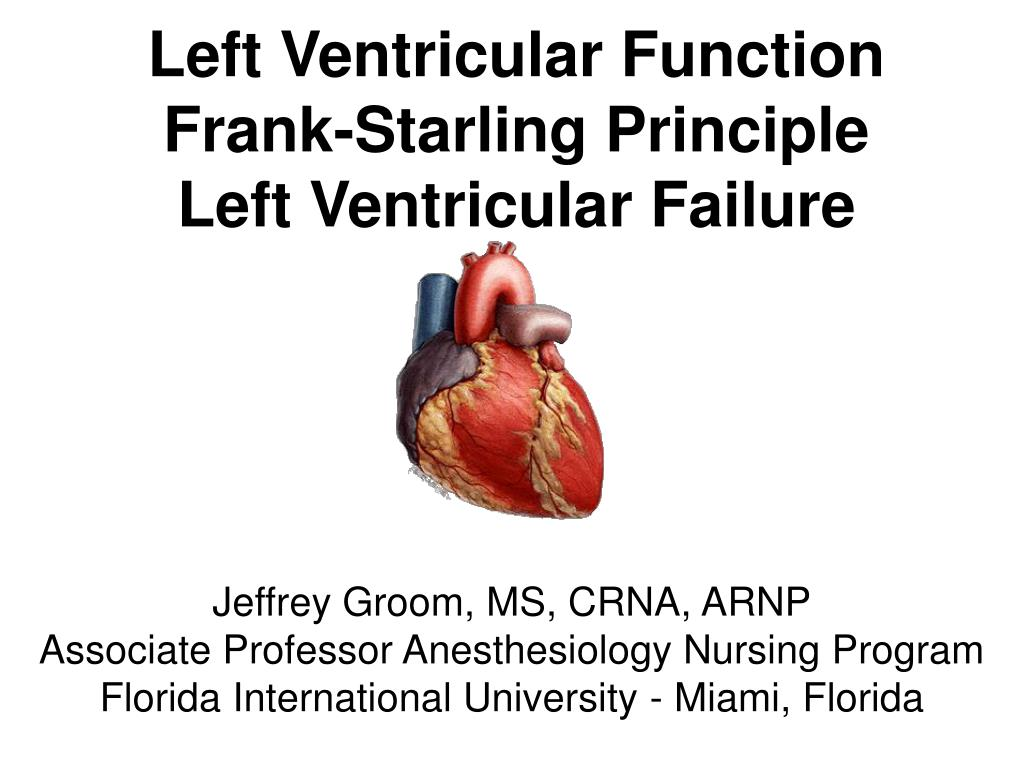 left ventricular function frank starling principle left ventricular failure l.