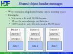 shared object header messages31