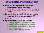 what does a statistician do