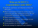 what are scefcu s responsibilities under bsa