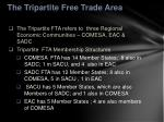the tripartite free trade area