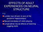 effects of adult experiences on neural structure