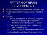 pattern of brain development