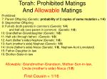 torah prohibited matings and allowable matings