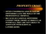 property crime7