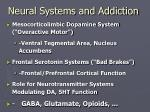 neural systems and addiction