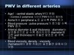 pwv in different arteries