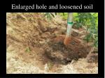 enlarged hole and loosened soil