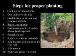 steps for proper planting20