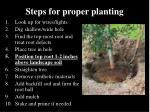 steps for proper planting23