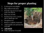 steps for proper planting40