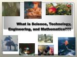 what is science technology engineering and mathematics