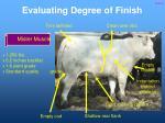 evaluating degree of finish9