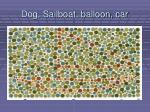 dog sailboat balloon car