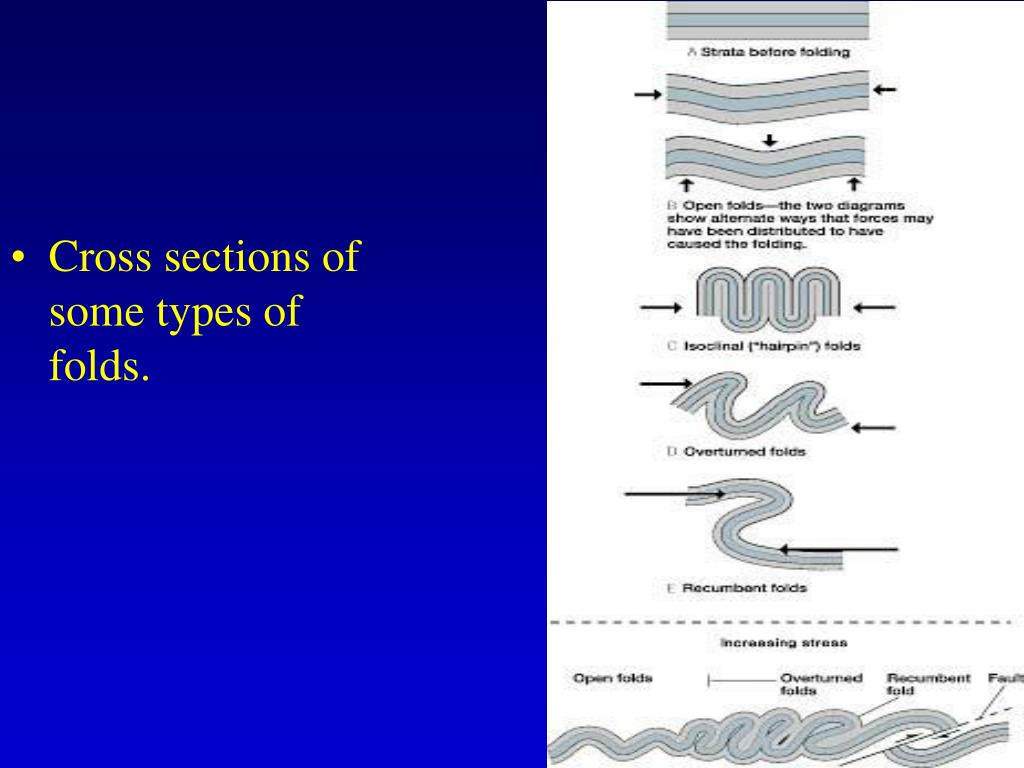 Cross sections of some types of folds.