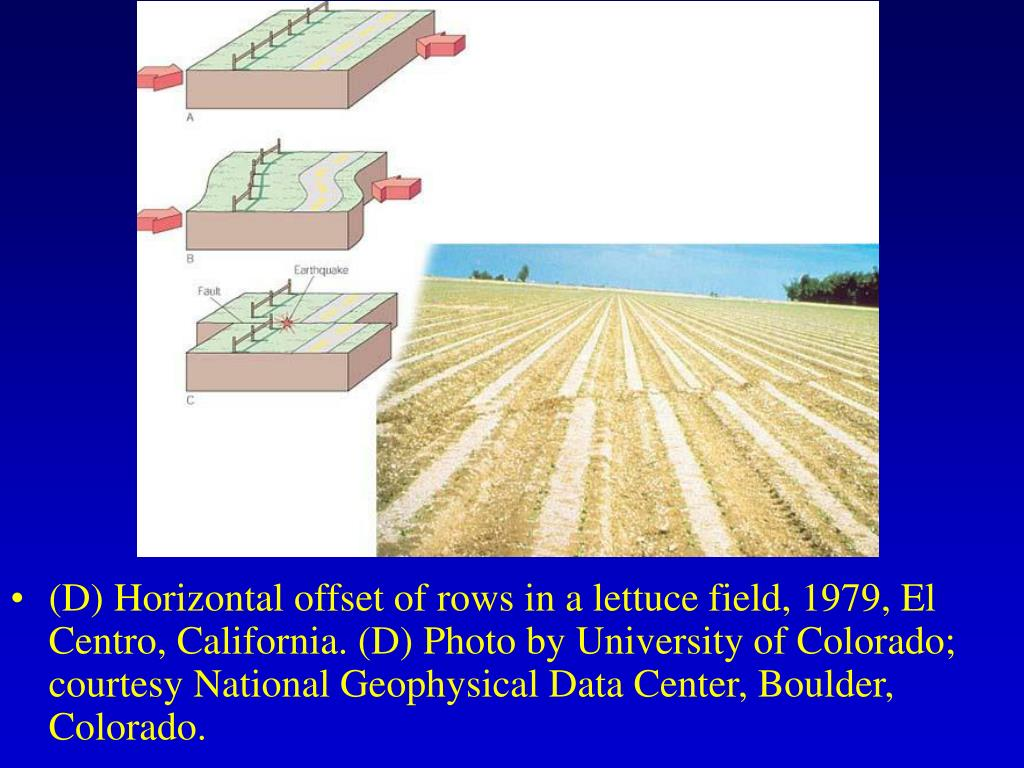 (D) Horizontal offset of rows in a lettuce field, 1979, El Centro, California. (D) Photo by University of Colorado; courtesy National Geophysical Data Center, Boulder, Colorado.