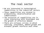 the real sector