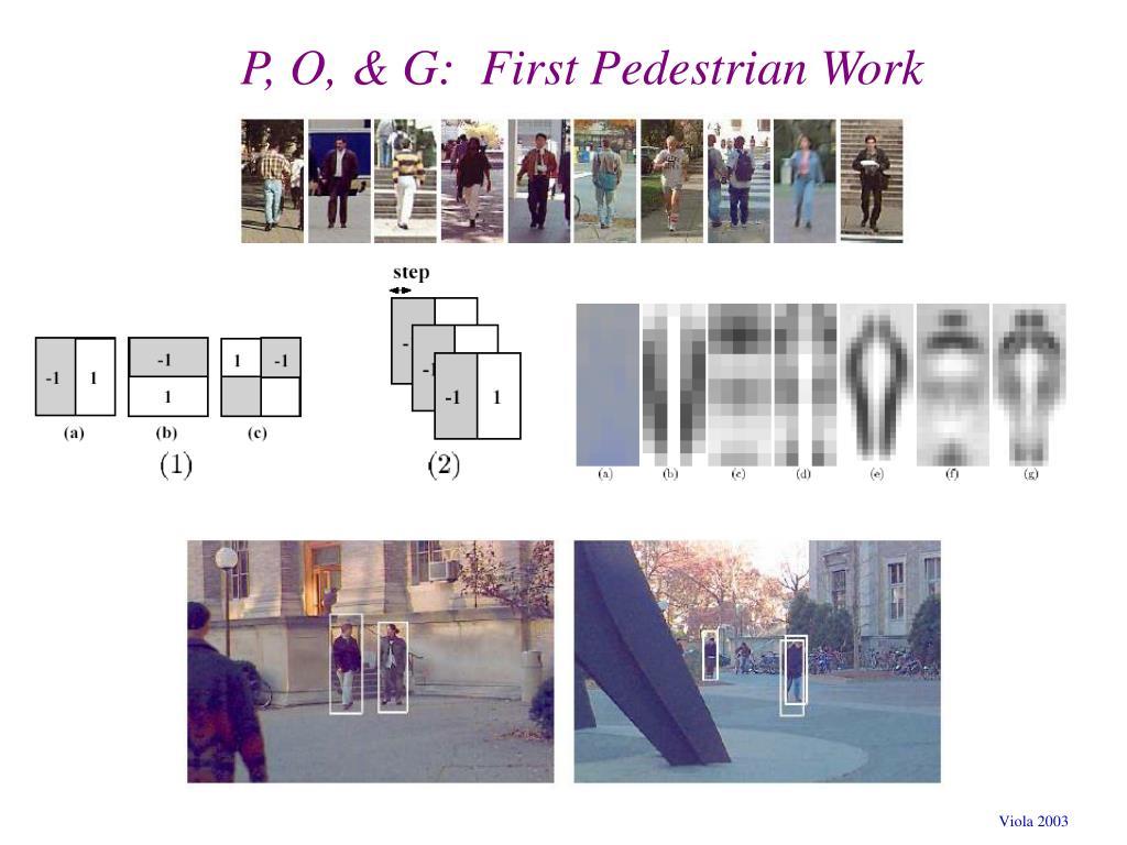 P, O, & G:  First Pedestrian Work