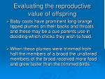 evaluating the reproductive value of offspring112