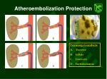 atheroembolization protection