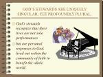 god s stewards are uniquely singular yet profoundly plural