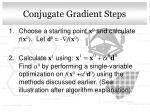 conjugate gradient steps