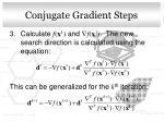 conjugate gradient steps1