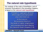 the natural rate hypothesis