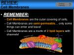 review cell membranes