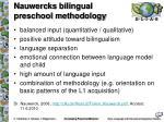 nauwercks bilingual preschool methodology