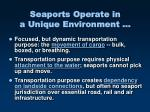 seaports operate in a unique environment