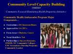 community level capacity building omhhd community focused eliminating health disparities initiative