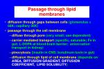 passage through lipid membranes