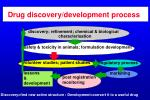 drug discovery development process