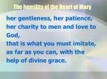 the humility of the heart of mary