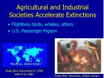 agricultural and industrial societies accelerate extinctions