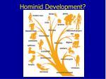 hominid development