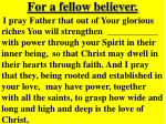 for a fellow believer