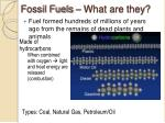 fossil fuels what are they