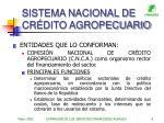 sistema nacional de cr dito agropecuario6