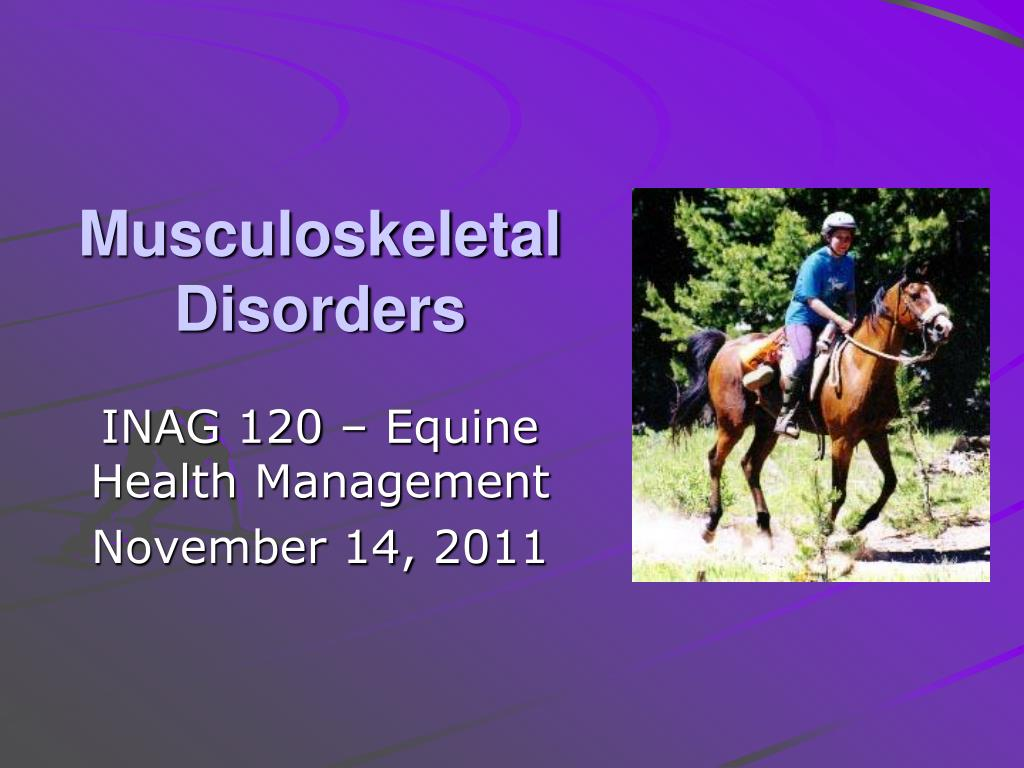 musculoskeletal disorders l.