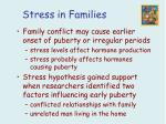 stress in families