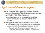 agricultural domestic support