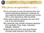 why focus on agriculture cont