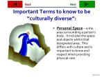 important terms to know to be culturally diverse33